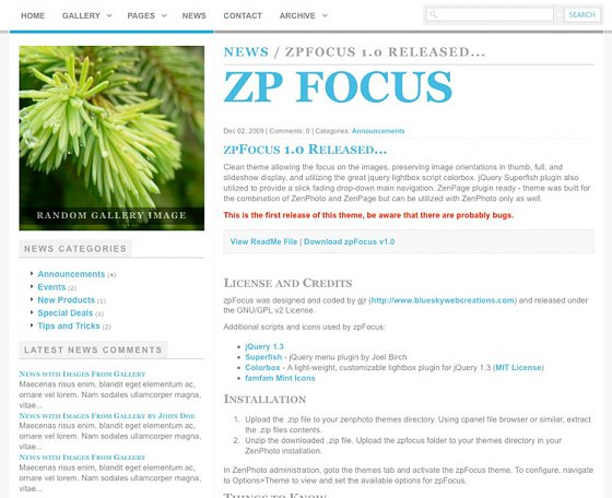 zpfocus-single-article